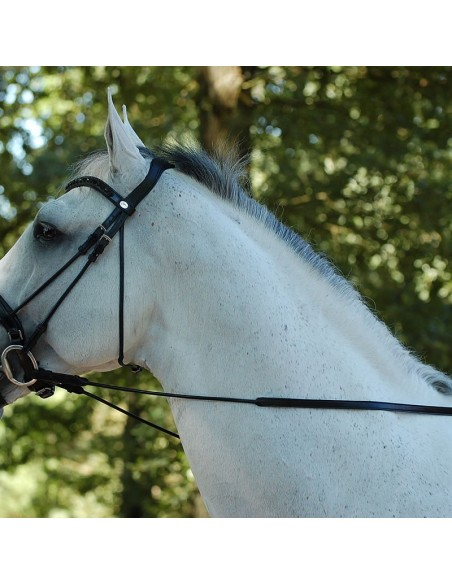Riendas Dressage Dyon Hunter sin Topes