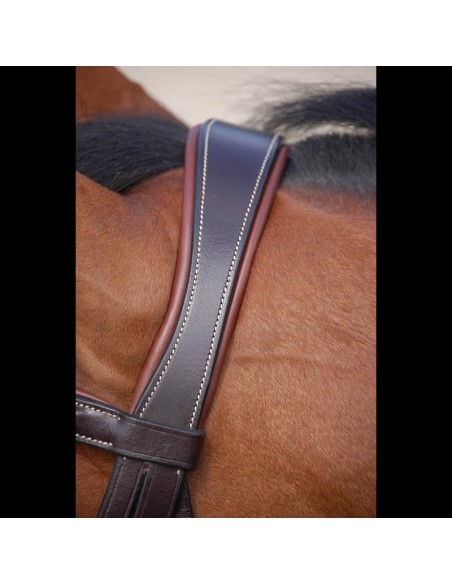 SNAFFLE BRIDLE DYON WITH COMBINED NOSEBAND