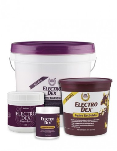 Suplemento con Electrolitos Electro Dex 1,3Kg