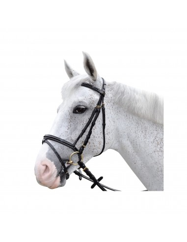 Cabezada Privilege Equitation Chetak Bright Charol