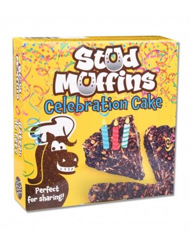 Pastel de Cumpleaños Stud Muffins
