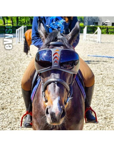 eQuick eVysor Horse Protective Glasses