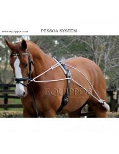 Sistema de Cuerda Original Pessoa