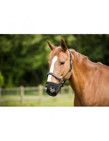Horse Muzzle Basket