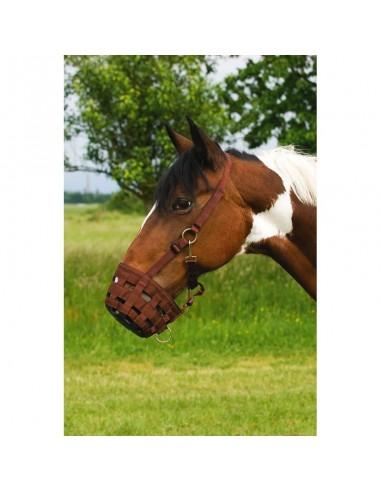 Nylon Horse Buzzle