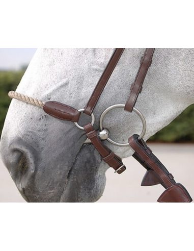 Dyon D Collection French Noseband