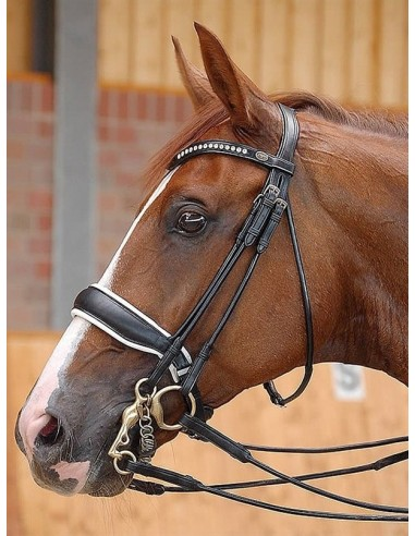 DOUBLE BRIDLE DYON DRESSAGE BIT...