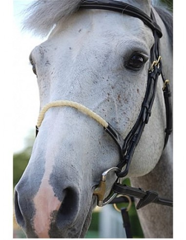 FRENCH NOSEBAND INDIVIDUALLY DYON COLLECTION
