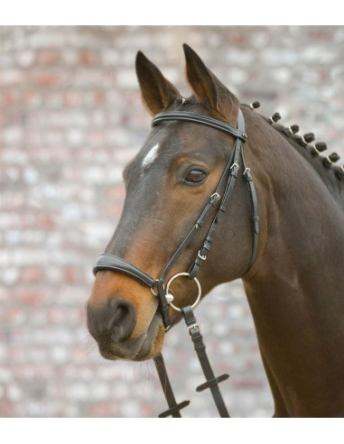 SNAFFLE BRIDLE WITH GERMAN NOSABEND HANNOVER (WITH REINS)