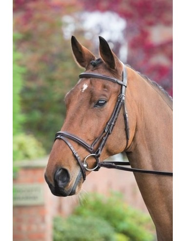 SNAFFLE BRIDLE ROSSANO JUMP WITH REINS
