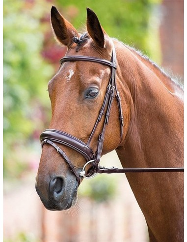 Simple Bridle Rossano Dressage Wide Noseband with Reins