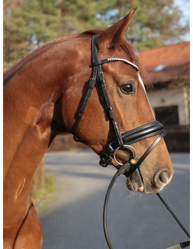 SNAFFLE BRIDLE BR BURFORD with Swarovksy