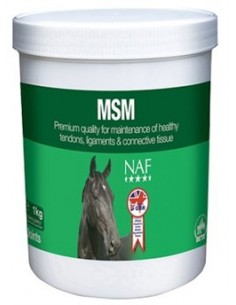 SUPPLEMENT FOR TENDONS AND LIGAMENTS MSM POWDER 300 GR