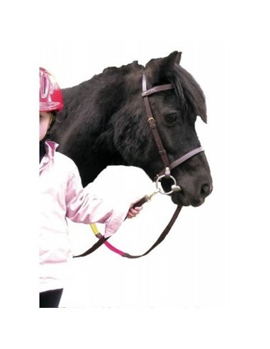 SNAFFLE BRIDLE FOR PONY WITH EDUCATIVE REINS