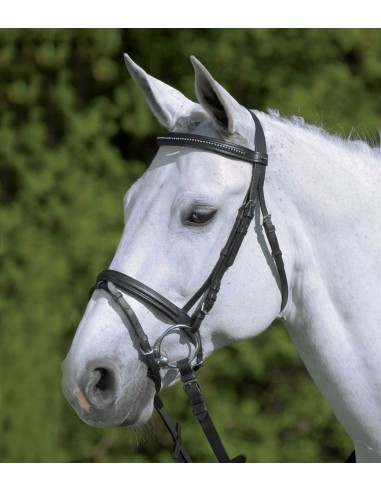 Simple Star Diamond Bridle with Reins for Pony