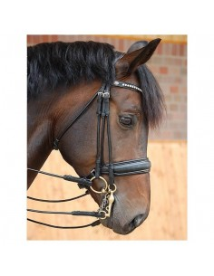 CABEZADA DOBLE DYON DRESSAGE BIT RECESS NEGRO MATE