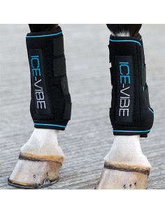 PROTECTORS ICE VIBE TENDON (THE PAIR)