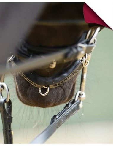 Acavallo Gel Chain Protector