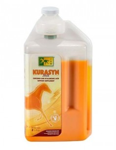 ANTI-INFLAMMATORY SUPPLEMENT FOR JOINTS KURASYN 360X