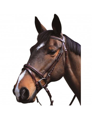 SNAFFLE BRIDLE LEXINGTON AUSTIN