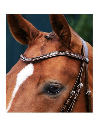 WAVED BROWBAND PASSIER STRASS