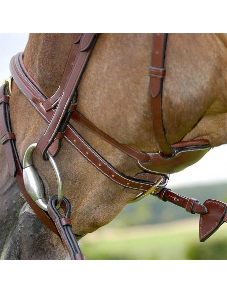 Dyon Difference Bridle with Combination Noseband