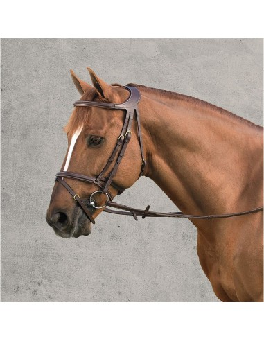 SNAFFLE BRIDLE DYON DIFFERECE WITH...