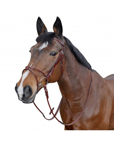 SNAFFLE BRIDLE ATLANTA WITH REINS