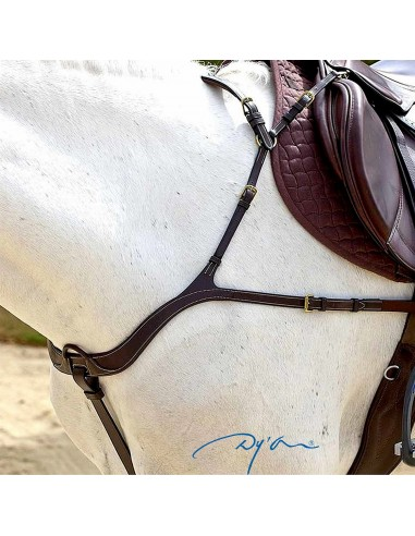ANATOMIC BREASTPLATE DYON