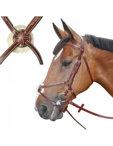 MEXICAN BRIDLE DENVER CROISE WITH REINS