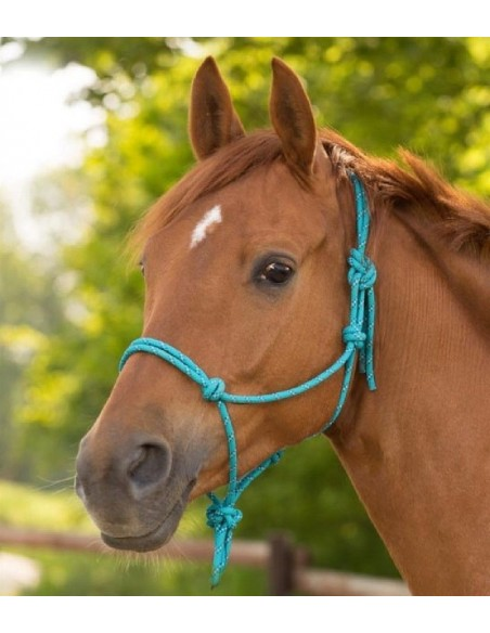 STRING HALTER ANNOUNCED