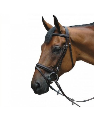 PRIVILEGE SNAFFLE BRIDLE WITH REINS