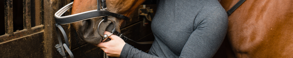 Accessories for Horse Bridles