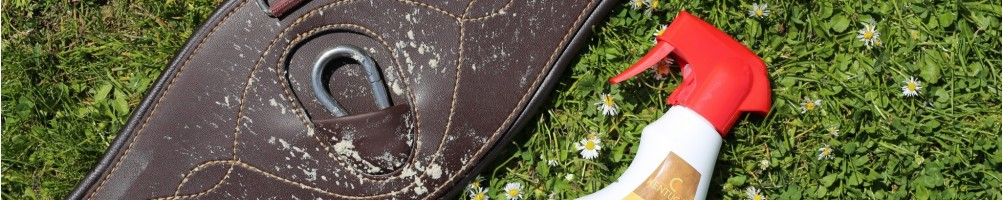 Horse Leather Cleaning