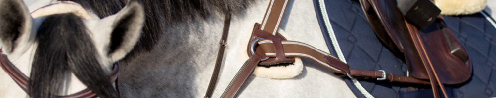 More Accessories for Saddles