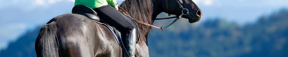 Routes and Excursions with horse