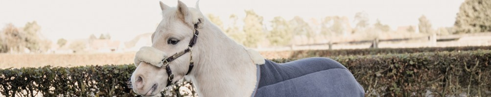 Artículos de equitación para Pony