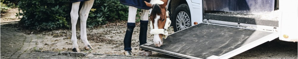 Travel Boots for Horses